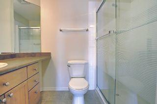 Photo 36: 201 4407 23 Street in Edmonton: Zone 30 Condo for sale : MLS®# E4254389
