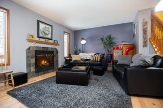 Photo 13: 309 Thibault Street in Winnipeg: St Boniface Residential for sale (2A)  : MLS®# 202008254