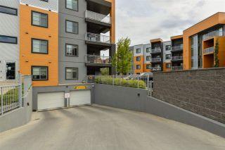 Photo 4: 235 503 Albany Way in Edmonton: Zone 27 Condo for sale : MLS®# E4211597