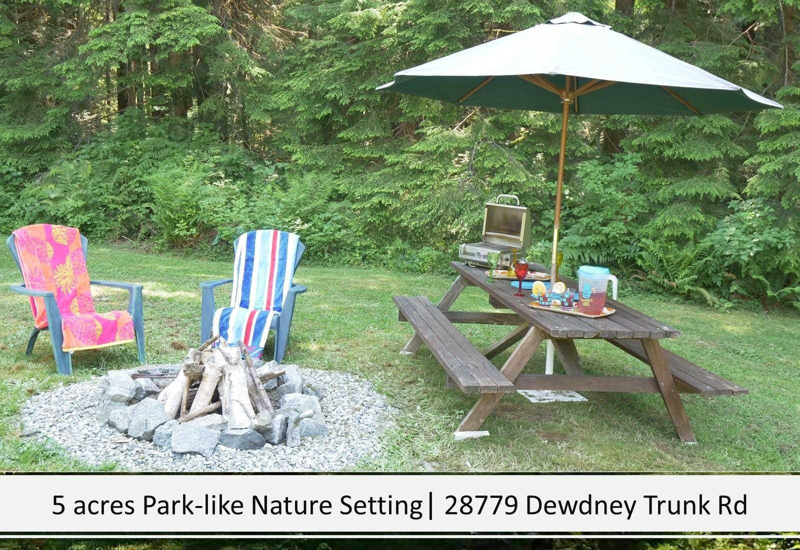 Photo 5: Photos: 28779 DEWDNEY TRUNK Road in Maple Ridge: Northeast House for sale : MLS®# R2597212