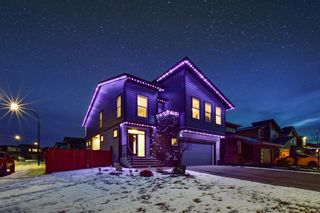 Photo 43: 34 Walden Park SE in Calgary: Walden Residential for sale : MLS®# A1056259