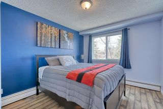 Photo 25: 306 315 Heritage Drive SE in Calgary: Acadia Apartment for sale : MLS®# A1090556