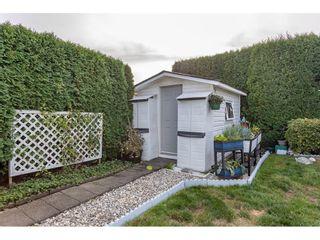 Photo 35: 12205 202 Street in Maple Ridge: Northwest Maple Ridge House for sale : MLS®# R2618044