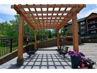 Photo 10: 207 103 VALLEY RIDGE Manor NW in Calgary: Valley Ridge Condo for sale : MLS®# C4098545