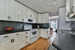 Photo 5: 35 Abergale Close NE in Calgary: Abbeydale Detached for sale : MLS®# C4267496