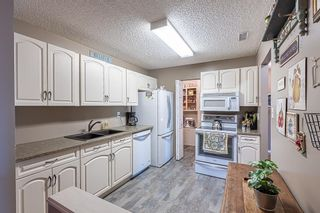 Photo 13: 132 70 WOODLANDS Road: St. Albert Carriage for sale : MLS®# E4261365