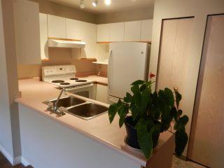 "Photo 4: 208 20561 113 Avenue in Maple Ridge: Southwest Maple Ridge Condo for sale in ""WARESLY"" : MLS®# R2302376"
