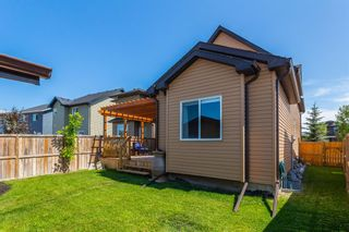 Photo 34: 2485 RAVENSWOOD View SE: Airdrie Detached for sale : MLS®# C4305172