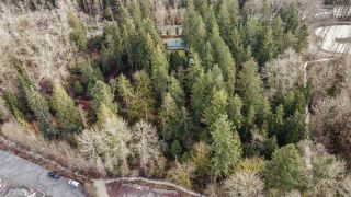 Photo 11: 1725 PIPELINE Road in Coquitlam: Hockaday House for sale : MLS®# R2544212