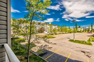 Photo 28: 3209 1620 70 Street SE in Calgary: Applewood Park Apartment for sale : MLS®# A1116068