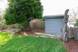 Photo 21: 420 Richmond Ave in VICTORIA: Vi Fairfield East House for sale (Victoria)  : MLS®# 806983