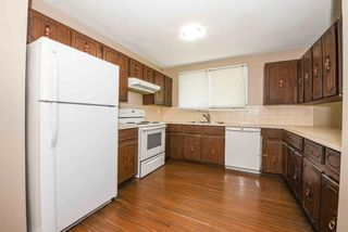 Photo 17: 40 Whitefield Crescent NE in Calgary: Whitehorn Detached for sale : MLS®# A1139313