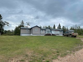 Photo 30: 24021 Twp Rd 620: Rural Westlock County House for sale : MLS®# E4264230