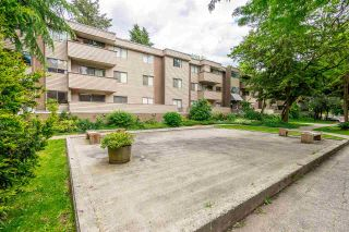 Photo 22: 22 2433 KELLY Avenue in Port Coquitlam: Central Pt Coquitlam Condo for sale : MLS®# R2461965