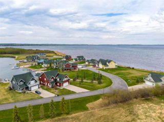Photo 38: 41 Sunset Harbour: Rural Wetaskiwin County House for sale : MLS®# E4244118