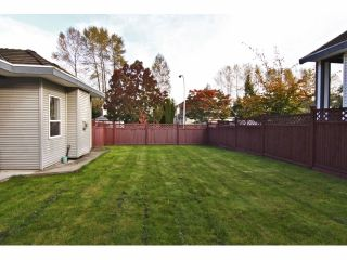 """Photo 20: 11144 152A Street in Surrey: Fraser Heights House for sale in """"Fraser Heights"""" (North Surrey)  : MLS®# F1324215"""
