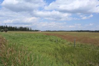 Photo 10: Twp 510 RR 33: Rural Leduc County Rural Land/Vacant Lot for sale : MLS®# E4256128
