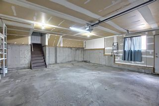 Photo 40: 30 MACEWAN RIDGE Place in Calgary: MacEwan Glen Detached for sale : MLS®# A1092445