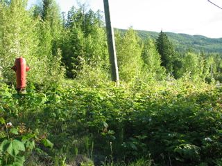 Photo 10: 5049 Ivy Rd: Eagle Bay Land Only for sale (SHuswap)  : MLS®# 10201912