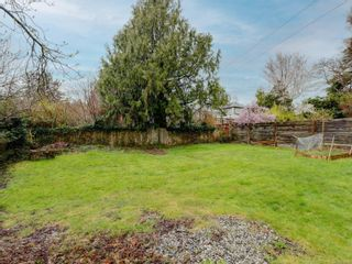 Photo 20: 930 Bank St in : Vi Fairfield East House for sale (Victoria)  : MLS®# 870826