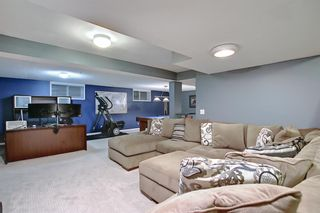 Photo 31: 328 Templeton Circle NE in Calgary: Temple Detached for sale : MLS®# A1074791