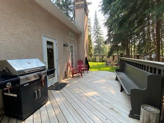 Photo 27: 272 woodley Drive: Hinton House for sale : MLS®# E4255606