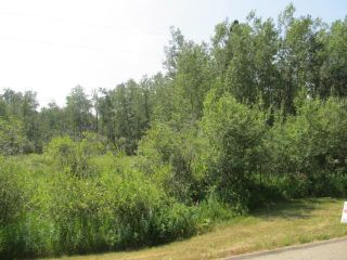 Photo 5: 398 52152 RR 210: Rural Strathcona County Rural Land/Vacant Lot for sale : MLS®# E4254227