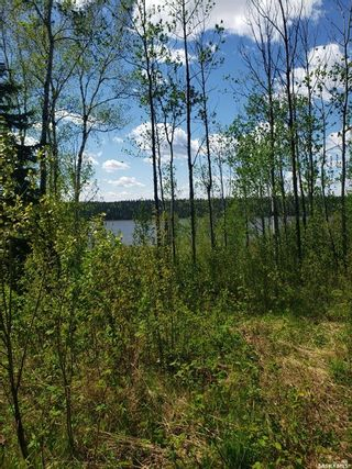 Photo 4: 14 Tranquility Drive in Cowan Lake: Lot/Land for sale : MLS®# SK871807