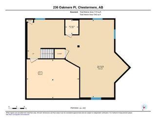 Photo 45: 236 Oakmere Place: Chestermere Detached for sale : MLS®# C4284696