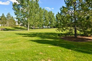Photo 9: 103 Cranwell Close SE in Calgary: Cranston Detached for sale : MLS®# A1091052