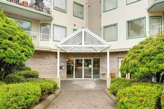 Photo 1: 109 19236 FORD Road in Pitt Meadows: Central Meadows Condo for sale : MLS®# R2336130