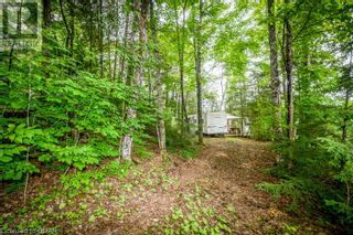 Photo 9: 0 MARKS POINT Road in Bancroft: Vacant Land for sale : MLS®# 40141117