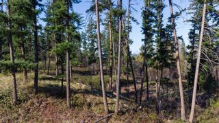 Photo 2: 3281 Hall Road, in Kelowna: Vacant Land for sale : MLS®# 10232100