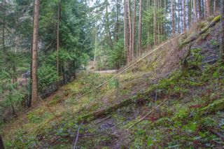 Photo 21: 2604 Yardarm Rd in : GI Pender Island Land for sale (Gulf Islands)  : MLS®# 863927
