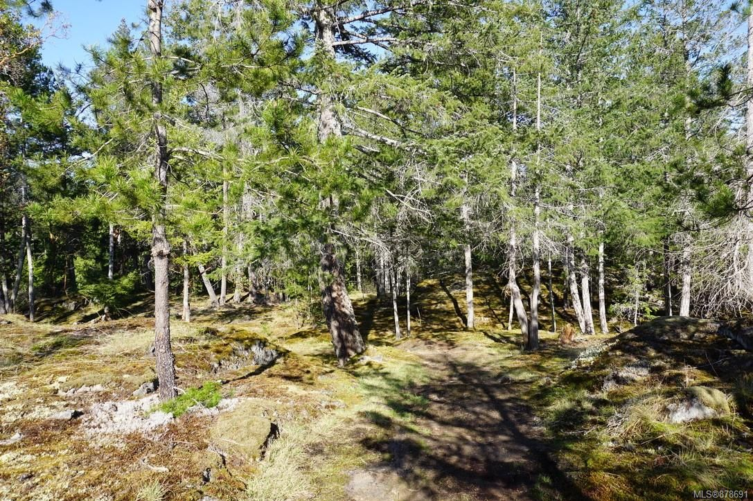 Photo 52: Photos: 979 Thunder Rd in : Isl Cortes Island House for sale (Islands)  : MLS®# 878691