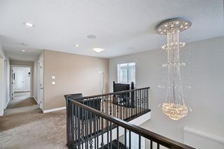 Photo 28: 458 Saddlelake Drive NE in Calgary: Saddle Ridge Detached for sale : MLS®# A1086829