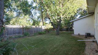Photo 3: 31 Watson - Winnipeg Real Estate