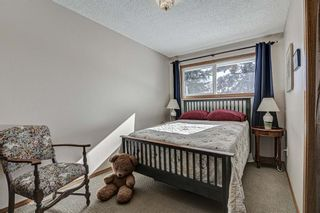 Photo 15: 311 Lynnview Way SE in Calgary: Ogden Detached for sale : MLS®# A1073491