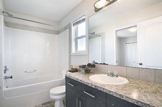 Photo 35: 311 TARALAKE Terrace NE in Calgary: Taradale Detached for sale : MLS®# A1128054