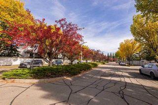 Photo 45: 27 1203 CARTER CREST Road in Edmonton: Zone 14 House Half Duplex for sale : MLS®# E4255537