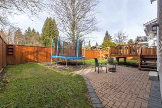 Photo 34: 4031 WEDGEWOOD Street in Port Coquitlam: Oxford Heights House for sale : MLS®# R2556568