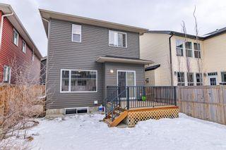 Photo 36: 336 SILVERADO PLAINS Circle SW in Calgary: Silverado Detached for sale : MLS®# A1061010
