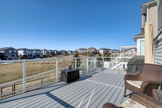 Photo 43: 231 LAKEPOINTE Drive: Chestermere Detached for sale : MLS®# A1080969