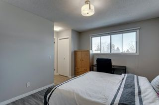 Photo 23: 3812 49 Street NE in Calgary: Whitehorn Detached for sale : MLS®# A1054455