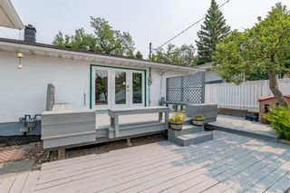 Photo 33: 303 42 Street SW in Calgary: Wildwood Detached for sale : MLS®# A1134148