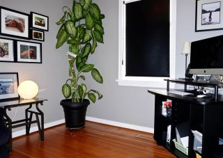 Photo 10: 50 E 60TH Avenue in Vancouver: South Vancouver House for sale (Vancouver East)  : MLS®# R2134203