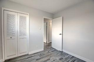 Photo 15: 3223 112 Avenue in Edmonton: Zone 23 House for sale : MLS®# E4252129