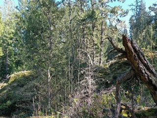 Photo 23: 1245 Silver Spray Dr in : Sk Silver Spray Land for sale (Sooke)  : MLS®# 872440