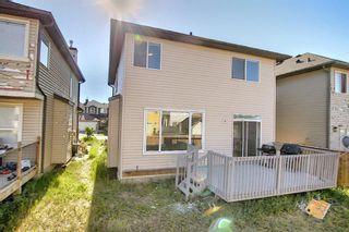 Photo 47: 8 Saddlecrest Gardens NE in Calgary: Saddle Ridge Detached for sale : MLS®# A1125888