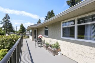 Photo 5: 11737 97A Avenue in Surrey: Royal Heights House for sale (North Surrey)  : MLS®# R2582644